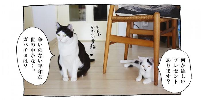 【猫写真4コママンガ】「クリプレリクエスト」パンチョとガバチョ #75