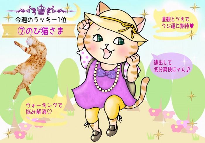 【猫さま占い】超幸運の猫さまは? 9月16日~9月22日運勢ランキング