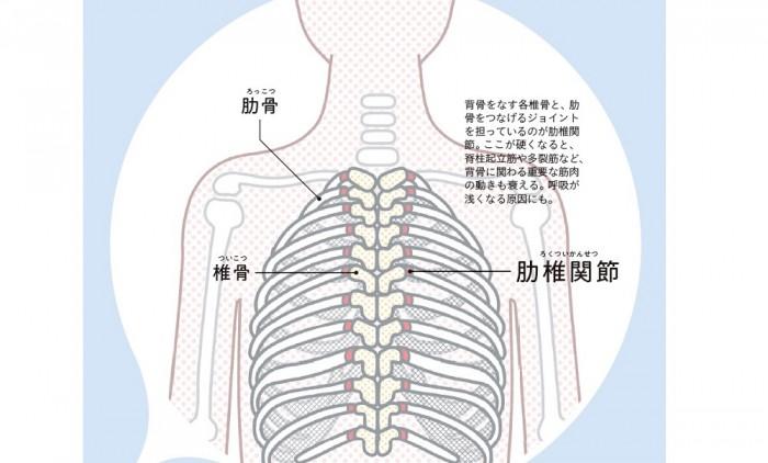 背骨全体をゆるめて不調を改善! S字ラインを復活させる基本トレ