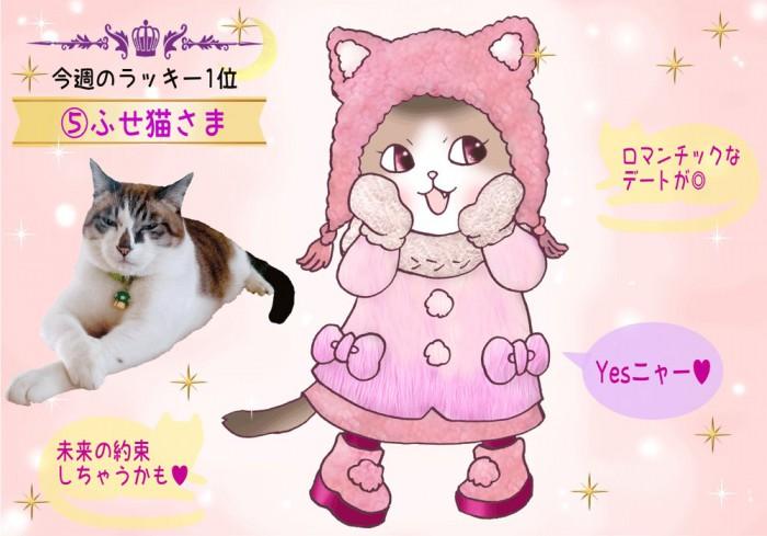 【猫さま占い】超ラッキーな猫さまは? 12月2日~12月8日運勢ランキング