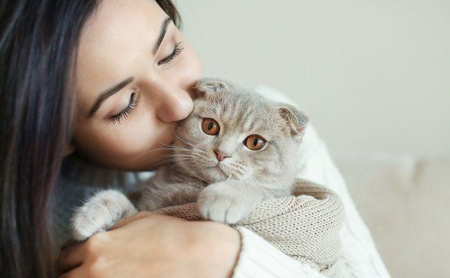 12星座別「猫ポーズ」占い!もしもあなたが猫なら恋はこうなる!?
