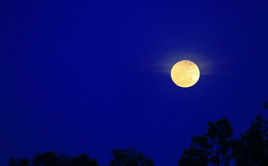 9月6日 魚座の満月【新月満月からのメッセージ】