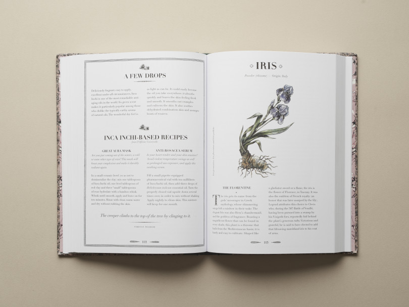 AN ATLAS OF NATURAL BEAUTY BOTANICAL INGREDIENTS FOR RETAINING AND ENHANCING BEAUTY by Victoire de Taillac and Ramdane Touhami