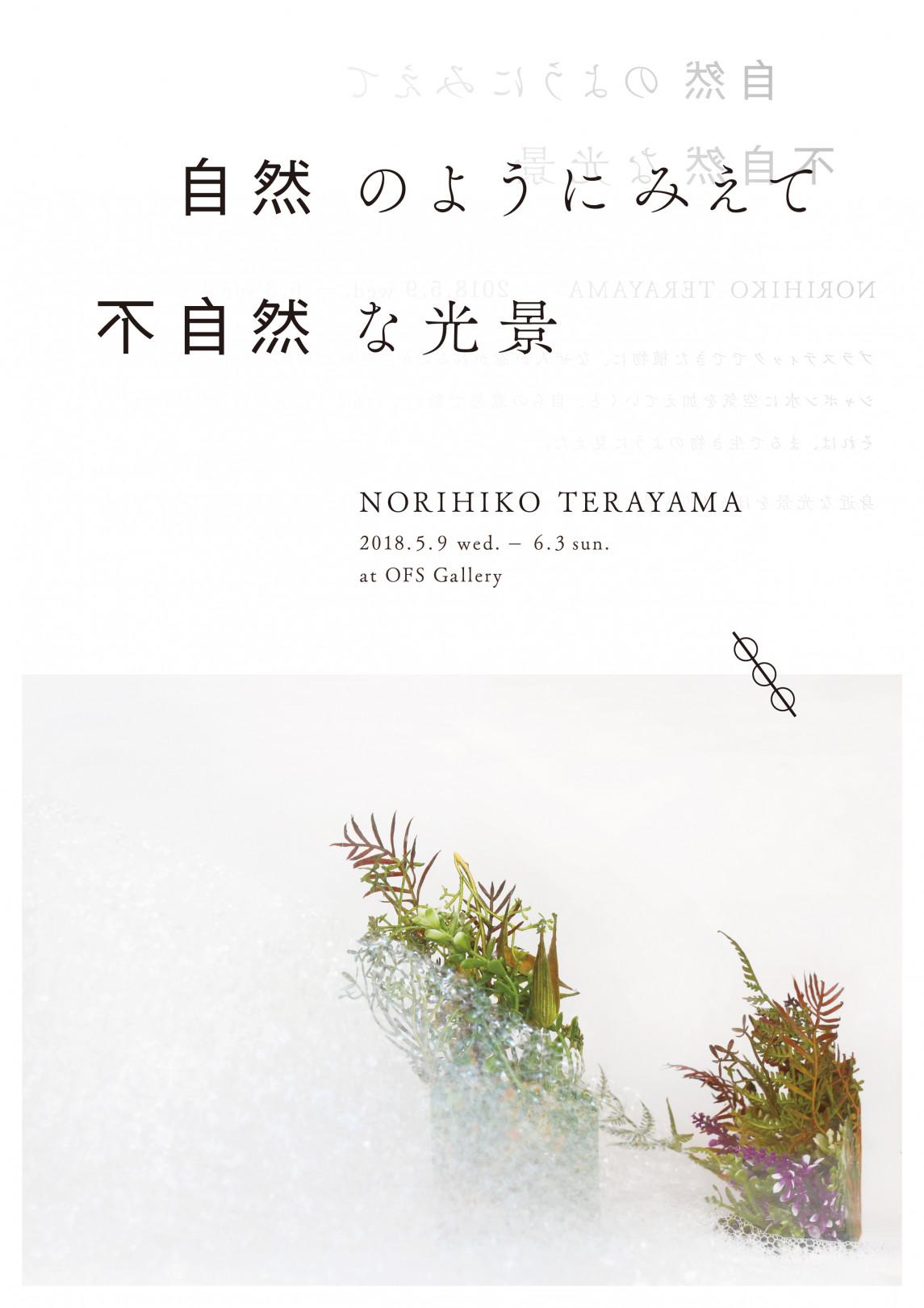 寺山紀彦(NORIHIKO TERAYAMA)、「自然のようにみえて不自然な光景」を白金OFS Galleryにて開催