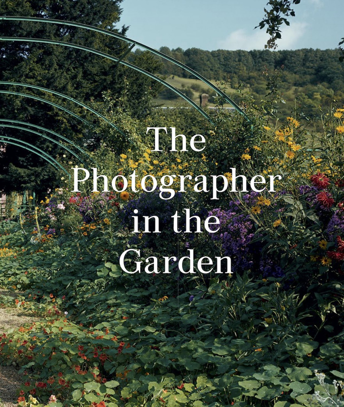 『The Photographer in the Garden』