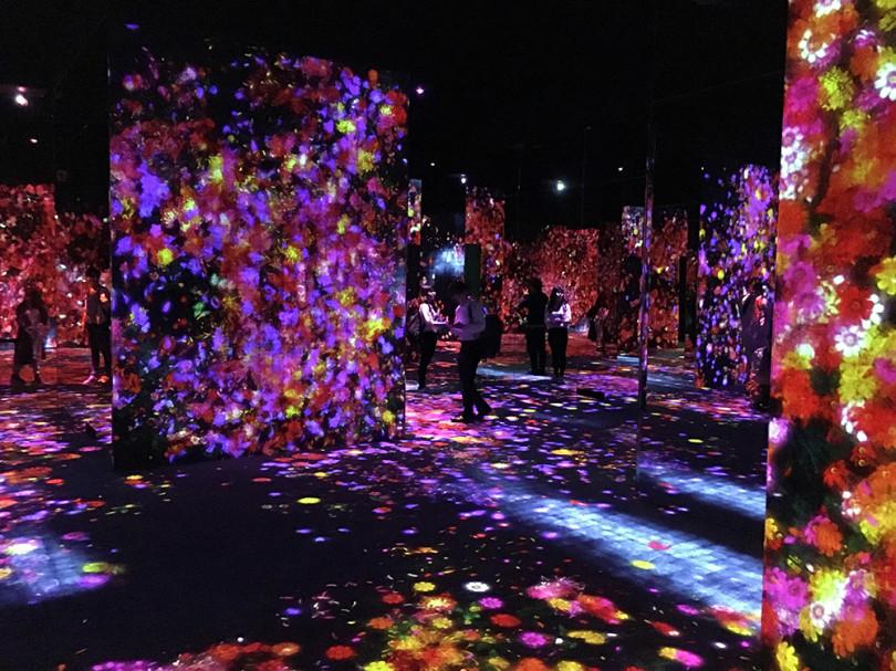 「MORI Building DIGITAL ART MUSEUM: EPSON teamLab Borderless」