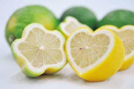気づいたら40代の手土産が「レモンだらけ」現象!みんなどうして選んでる?