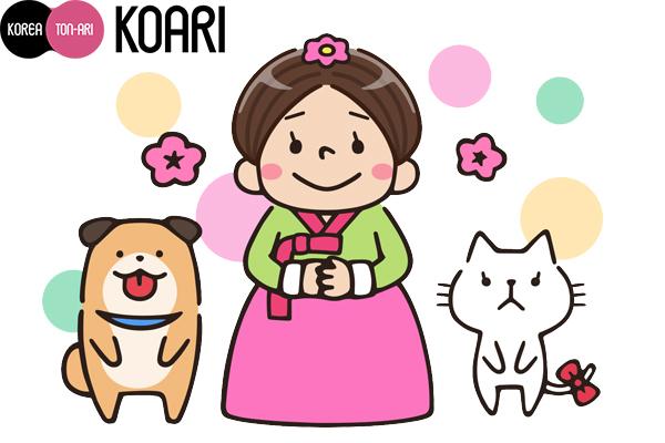 犬のモンイ、コアリちゃん、猫のヤウン