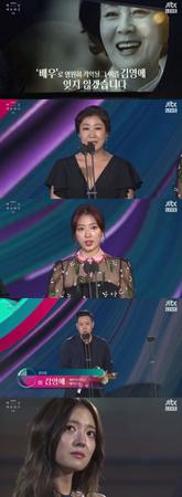 ガン闘病の末、先月9日にこの世を去った韓国女優キム・ヨンエが、功労賞を受賞した。(提供:OSEN)