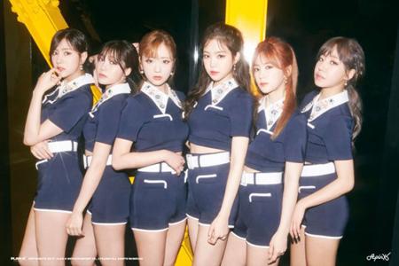 韓国ガールズグループ「Apink」の殺害脅迫犯が今度はショーケース会場に爆弾を設置したと脅迫し、警察特攻隊が出動した。(提供:OSEN)