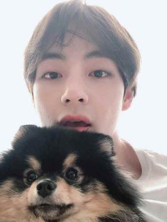 韓国ボーイズグループ「防弾少年団」メンバーのVが、愛犬との日常を公開した。(提供:OSEN)
