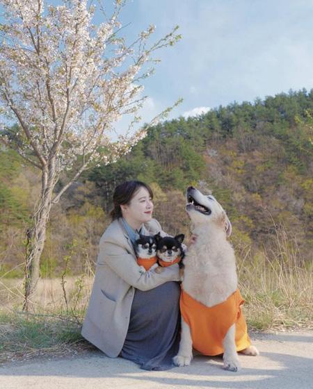 """ク・ヘソン、アン・ジェヒョンと離婚できない理由は""""伴侶動物のアンジュ""""?! (提供:news1)"""